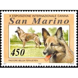 Esposizione internazionale canina